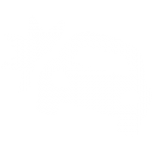 Personal Injury | Auto Accidents | Feagans Law Group